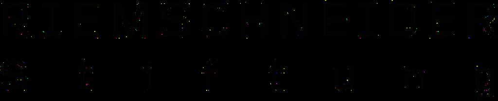 Logo der Riemschneider Stiftung